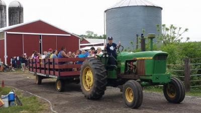 buffalo_tractor